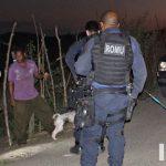 Itapetinga: Cachorros que eram vítimas de maus-tratos são resgatados;  proprietário detido